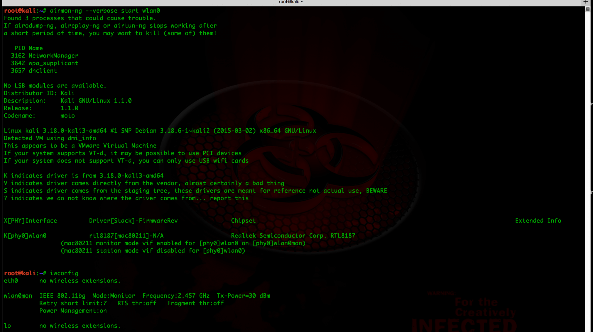 Что следует сделать сразу после установки Kali Linux