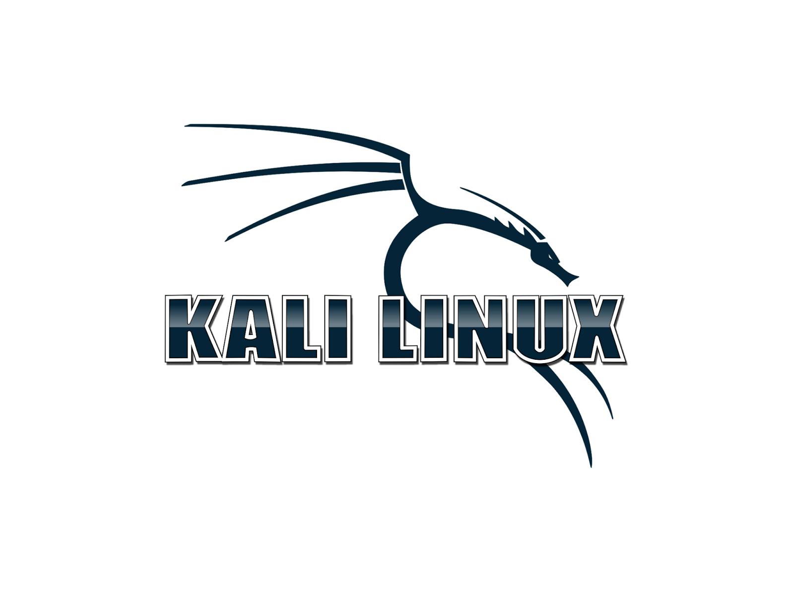 Как обойти блокировку Windows, чтобы запустить Kali Linux c Live USB