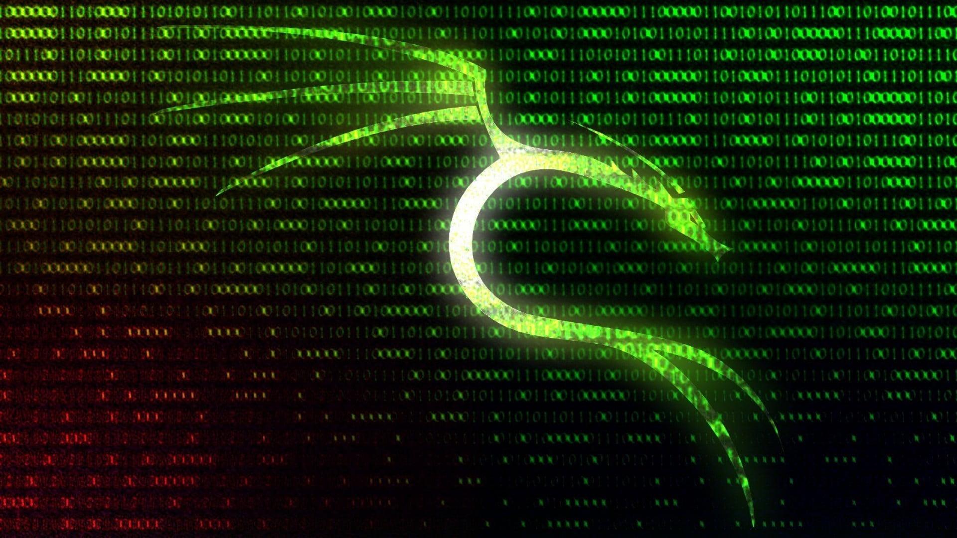 15 фактов перед началом работы с системой Kali Linux