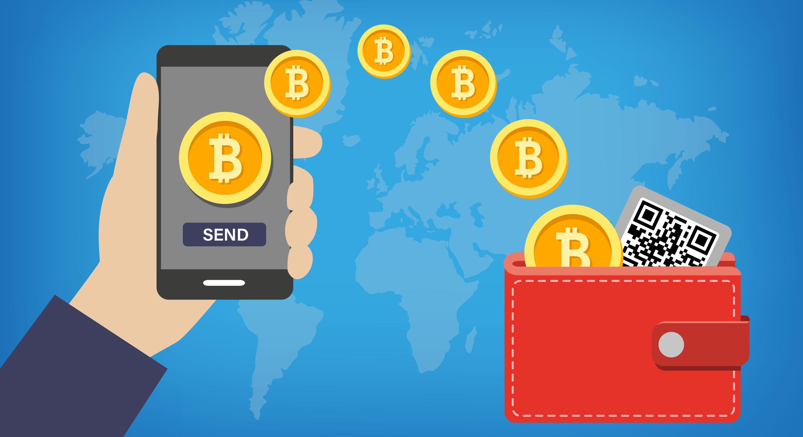 Как выбрать биткоин-кошелёк: руководство для начинающих
